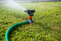 Prevent mold by not watering your house - Mold Solutions NW