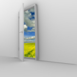 Open Door to Mold - Mold Solutions NW