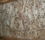 Dangerous Mold - Mold Solutions NW