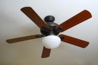 Ceiling Fans Help Reduce Humidity - Mold Solutions NW