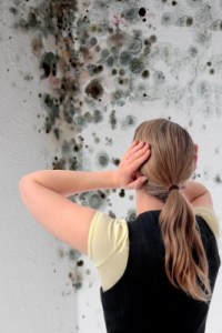 How Does Mold Grow - Mold Solutions NW